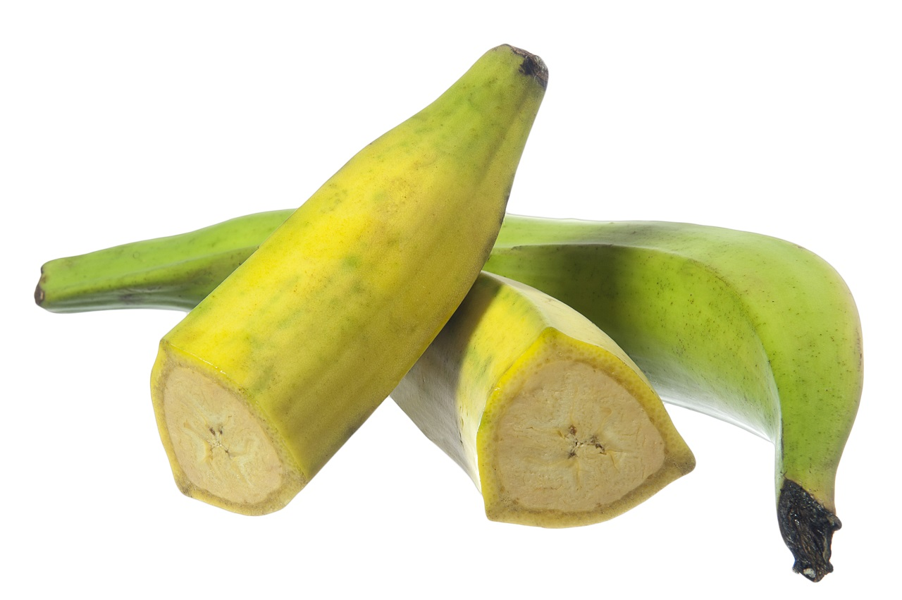 fruit-of-the-plaitain-and-traditional-food-of-South-America